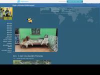 Nijinski.wbs.cz - Nijinski Ballet Barzoj | NEWS 2015