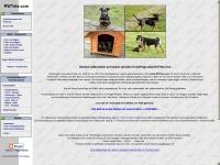 www.RWTele.com - Dein Gesundheitsportal