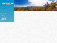thueringer-fahrlehrerverband.de