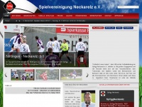 SpVgg Neckarelz - Regionalliga Südwest