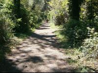 gazelle-pforzheim.de