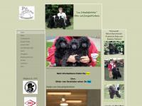 Pudelzucht vom Schaukelpferdchen von Heide Seebacher