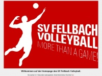 SV Fellbach Volleyball, Volleyball 2. Bundesliga, Regionalliga, Volleyball in Stuttgart