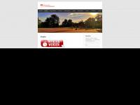 tv-kirchentellinsfurt.de
