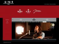 AMI-GmbH: AMI Musical Instruments GmbH
