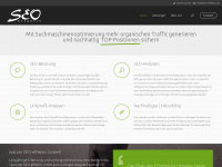 seo-effektiv.de