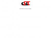 DM SolarHaus - Das erste Haus, das Geld verdient -