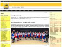 tvhofheim-basketball.de