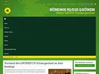 Homepage der Grünen: Home