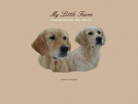 My-little-farm.de - My Little Farm - Golden Retriever Zucht