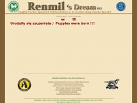 renmil.com