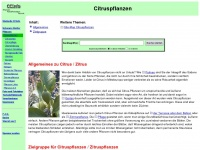 citruspflanzeninfo.de