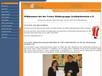 fwg-grossniedesheim.de