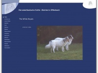 the-white-royal-american-collie.de