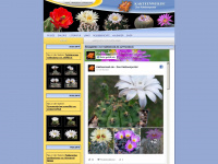 kakteenweb.de Thumbnail