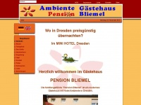 pension-bliemel.de