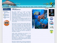 easydivers-academy.com