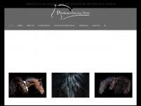 pferdesportservice.de