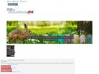stocklots24.pl