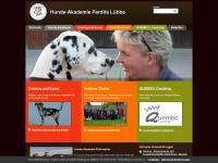 hundeakademie.de Thumbnail