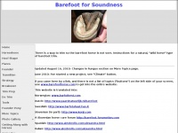 barefoothorse.com