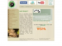greatapeproject.org
