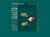 heim-aquarium.de