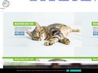Tierschutzverein Alfeld Leine e.V. | Willkommen