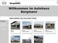45 hnliche websites zu borgmann autohaus. Black Bedroom Furniture Sets. Home Design Ideas
