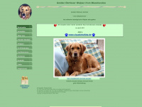 Golden Retriever Welpen von Claudia Hollatz,Golden Retriever,www.golden-retriever-hollatz.de, Zwinger from Meadowview, Golden Retriever Welpen