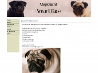 Mopszucht Smart Face
