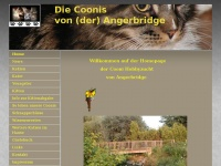 angerbridge.de