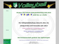 ostheim-volleyball.de