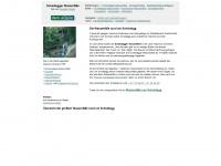 """Die Scheidegger Wasserfälle - das 7. Geotop aus der Reihe """"Allgäuer Geotope"""" vom Team """"dein allgäu"""""""