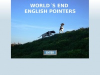 englishpointer.at