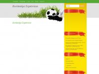 Aktuelle Fussball-Bundesliga Ergebnisse und Fussballnachrichten