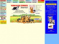 Yorkshire-Terrier-Journal