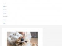 detekteien-verzeichnis.de