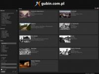 gubin.com.pl