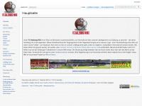 FC Red Bull Salzburg und FC Liefering Fan Magazin › SALZBURG12.at