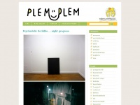 plemplemkaufraum.wordpress.com