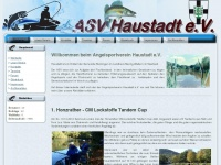 asv-haustadt.de