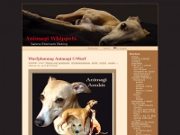 Animagi-whippets.at - Animagi Whippets