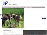 """Eselinnot.de - Esel in Not - Verein """"Esel in Not"""" kümmert sich um kranke, misshandelte, schlecht gehaltene und alte Esel"""