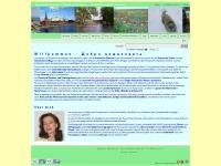 Russisch-Unterricht in Luzern/Zentralschweiz