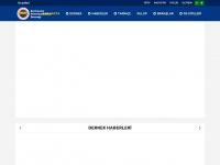 Dortmund Fenerbahceliler Dernegi