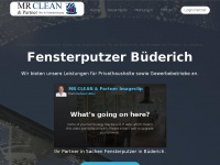 fensterputzer-buederich.de