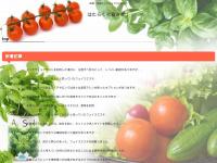 globalbiketrotting.org