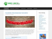 hunde-links24.de