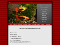xiphophorus-zuchtformen.de